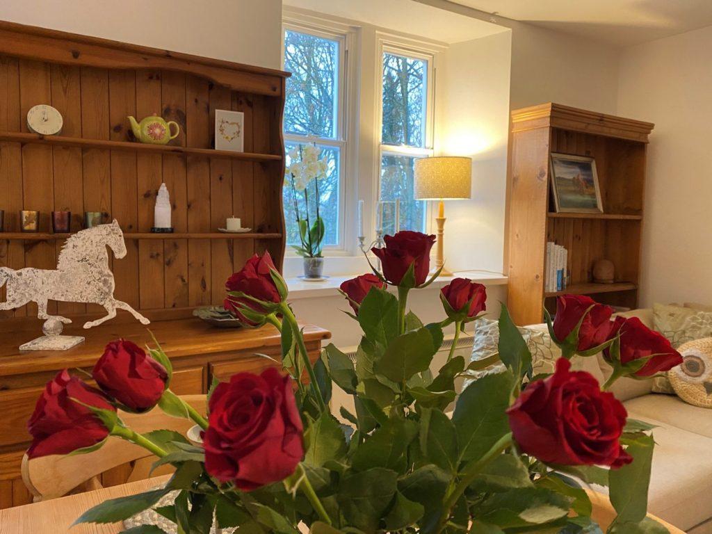 Lifestyle roses 3